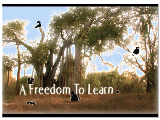 A Freedom to Learn